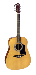 Hohner Dreadnought A+, Full Size, Steel