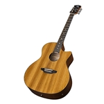 Luna Gypsy Zebrawood Acoustic/Electric